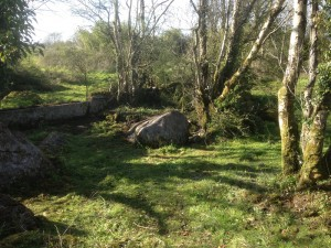 Scenery at The Red Gates, Corofin, Co Clare