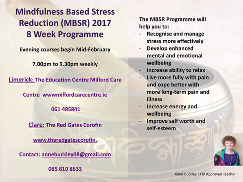 Mindfulness Based Stress Reduction Programme - Spring 2017 Poster, The Red Gates, Corofin